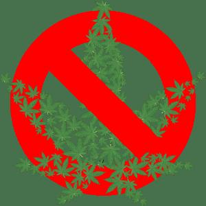 We maken ons sterk voor vergoeding medicinale cannabis